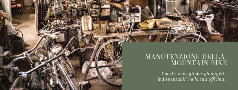 Manutenzione Mountain bike